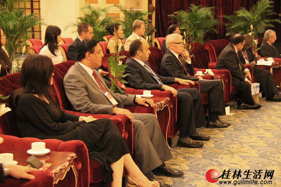 参会的各国驻华使节。