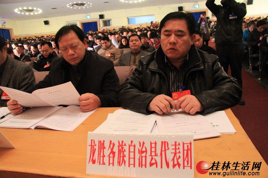 出席桂林市第四届人民代表大会第二次会议的龙胜各族自治县代表团