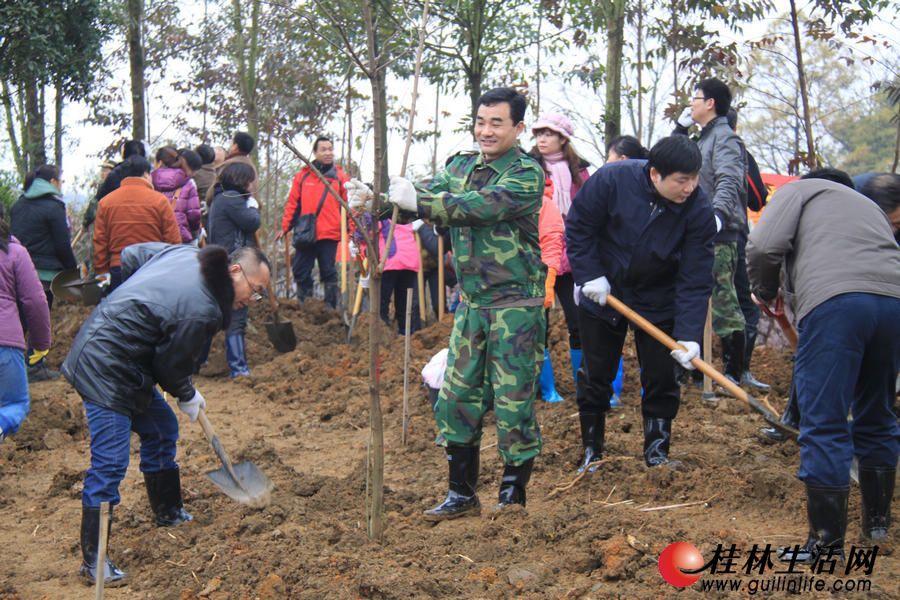 市民在广西第二届园博园工地种植树木
