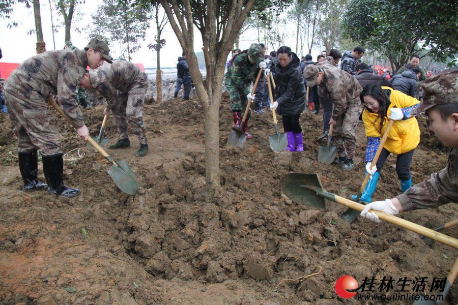 解放军部队官兵在广西第二届园博园工地参加义务植树活动