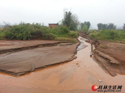 燕水村附近,黄泥浆流入榕津河。记者周绍瑜