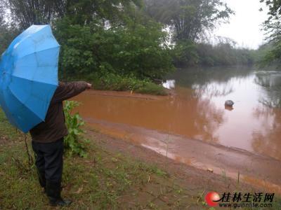 乐加村附近,黄泥水最终汇入榕津河。记者周绍瑜