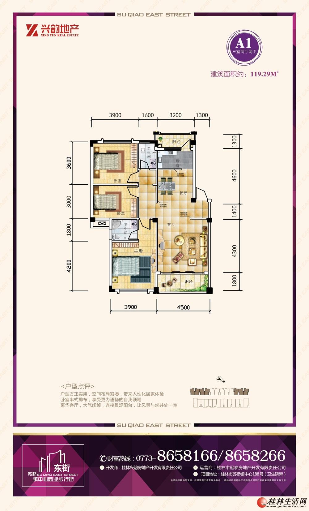 A1 三室两厅两卫 119.29㎡