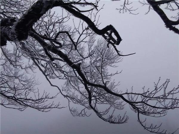 惊艳!猫儿山出现今年第一场雾凇